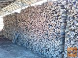 bukova drva, suha