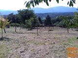 Straža Drganja sela Zazidljiva 3012 m2