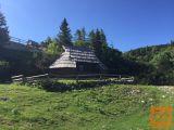 Kamnik Velika Planina ¸Zeleni Rob Koča 30 m2