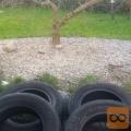 Prodam letne pnevmatike Nexen