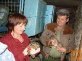Uzgoj divljih zečeva - CD